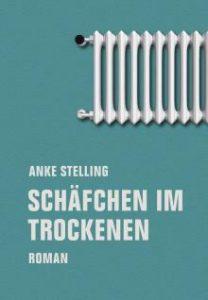 Cover des Buchs Schäfchen im Trockenen von Anke Stelling