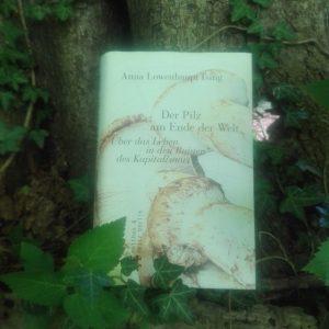 Cover von Der Pilz am Ende der Welt von Anna Lowenhaupt Tsing