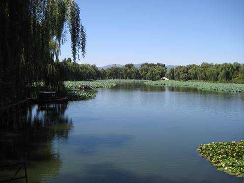 Leseort Peking: See mit Lotusblüten